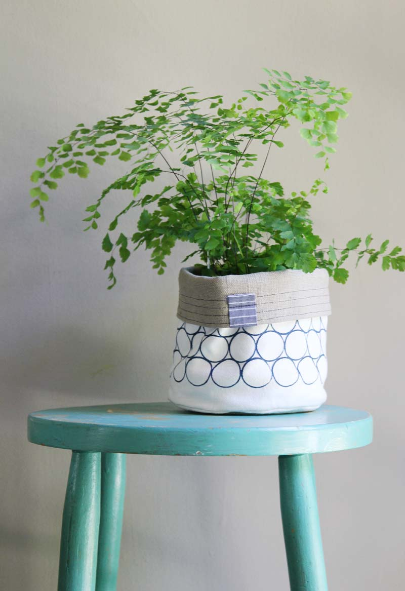 lucinda-plant-cozy