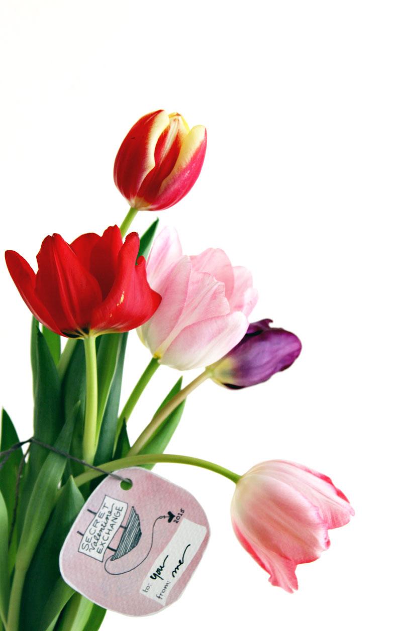 2015-sve-flowers2