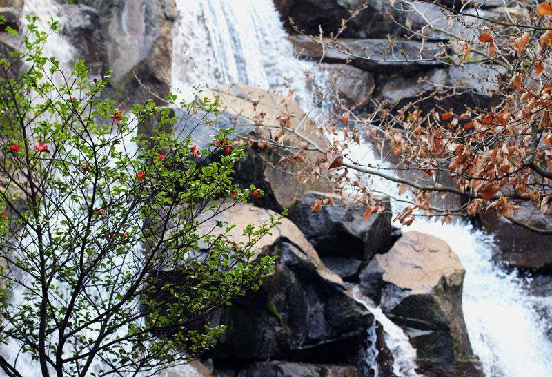 city-waterfall