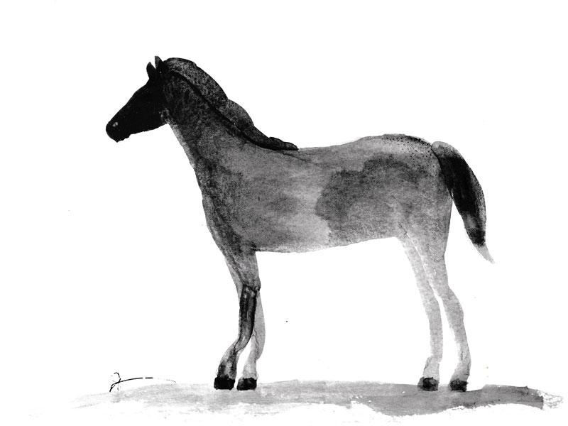 horse-illo