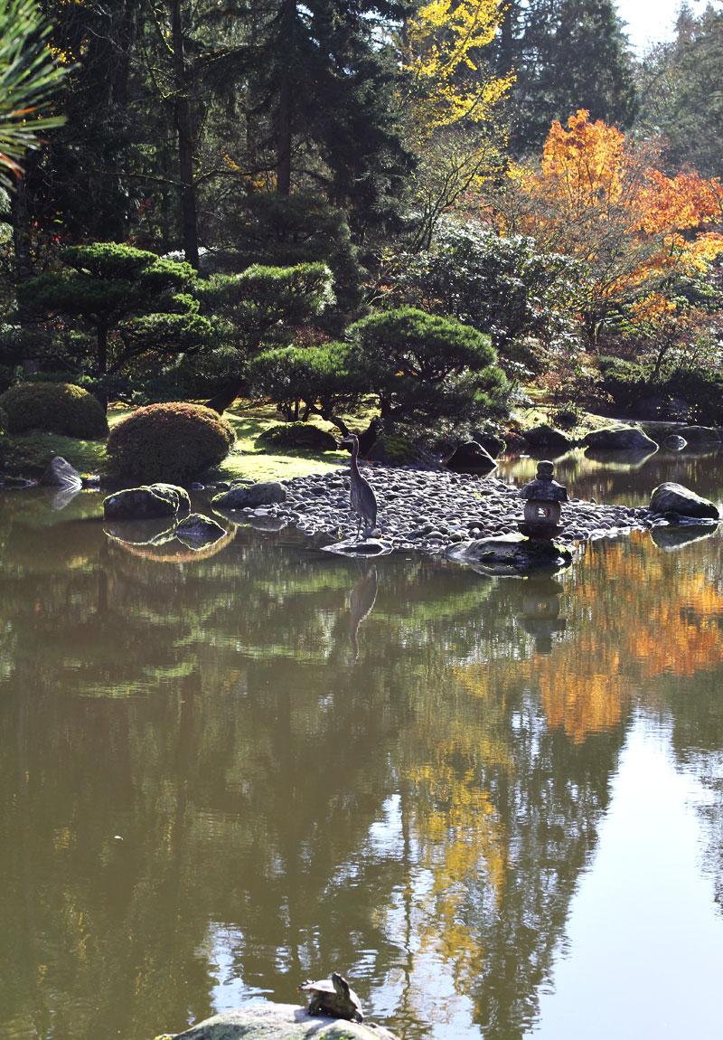 japanese-garden6
